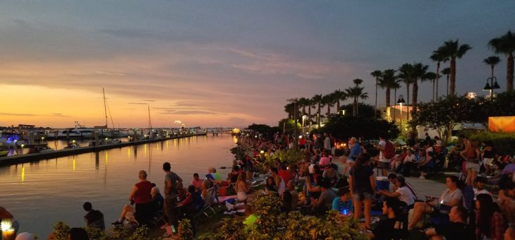 Tampa Bay Area Activities