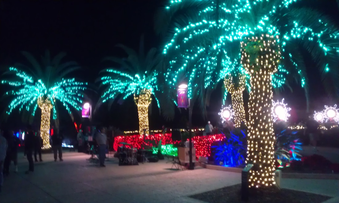 Christmas Lights on the Florida Gulf Coast