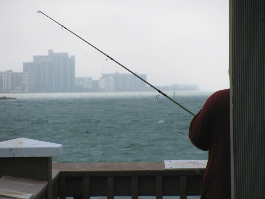 5 best places to escape at clearwater beach for Pier 60 fishing