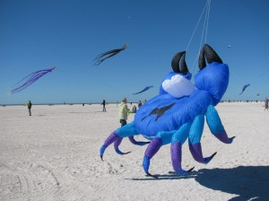 Treasure Island Kite Festival