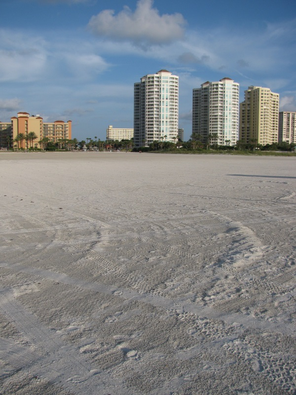 5 Best Places To Escape At Clearwater Beach