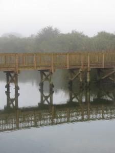 Florida parks