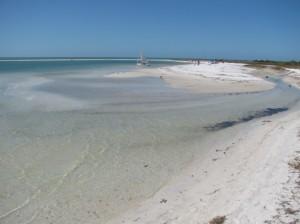 Low tide at Honeymoon Island Florida