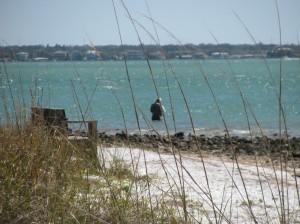 Fishing the Florida Gulf Coast