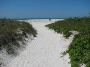 Sand Key Beach trail