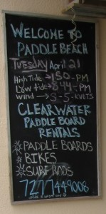 Cleawater Paddleboard Co