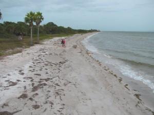Egmont Key beach