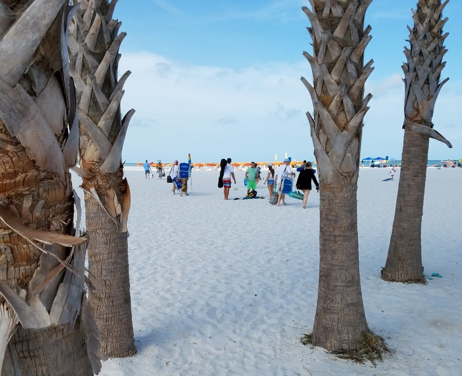 Clearwater Beach outing