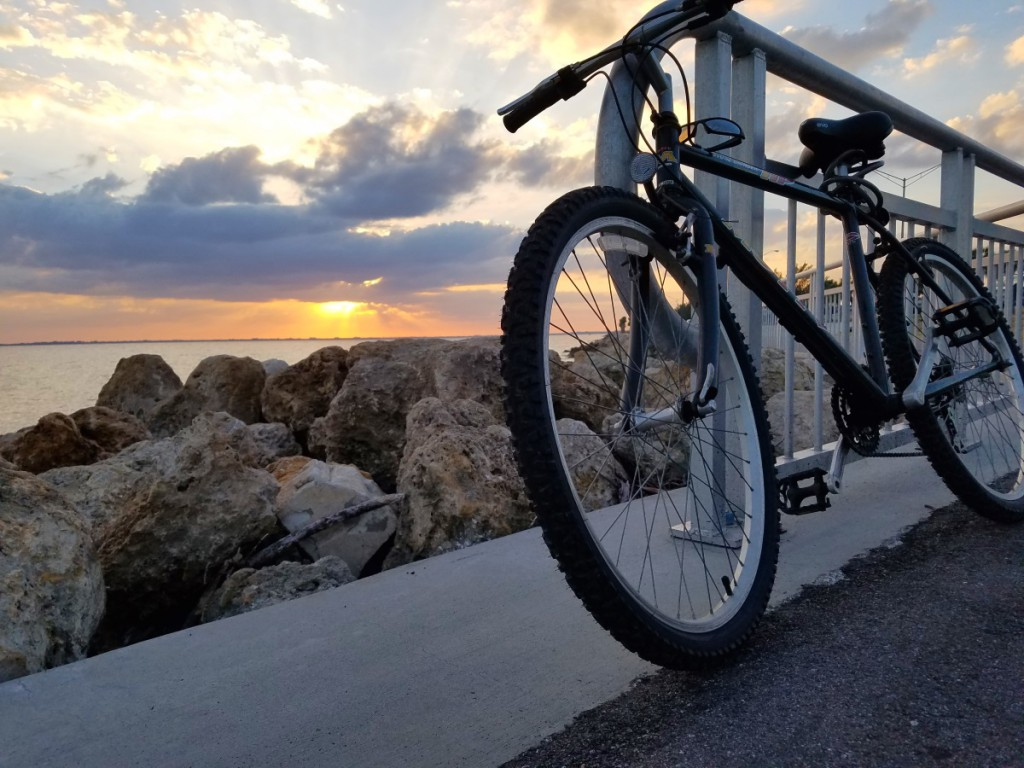Bike on Courtney Campbell Causeway Trail