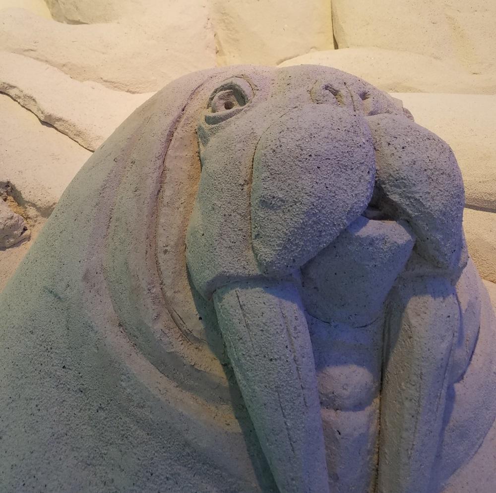 Walrus Sugar Sand Festival