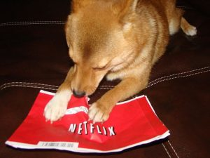 Dog tearing into Netflix envelope