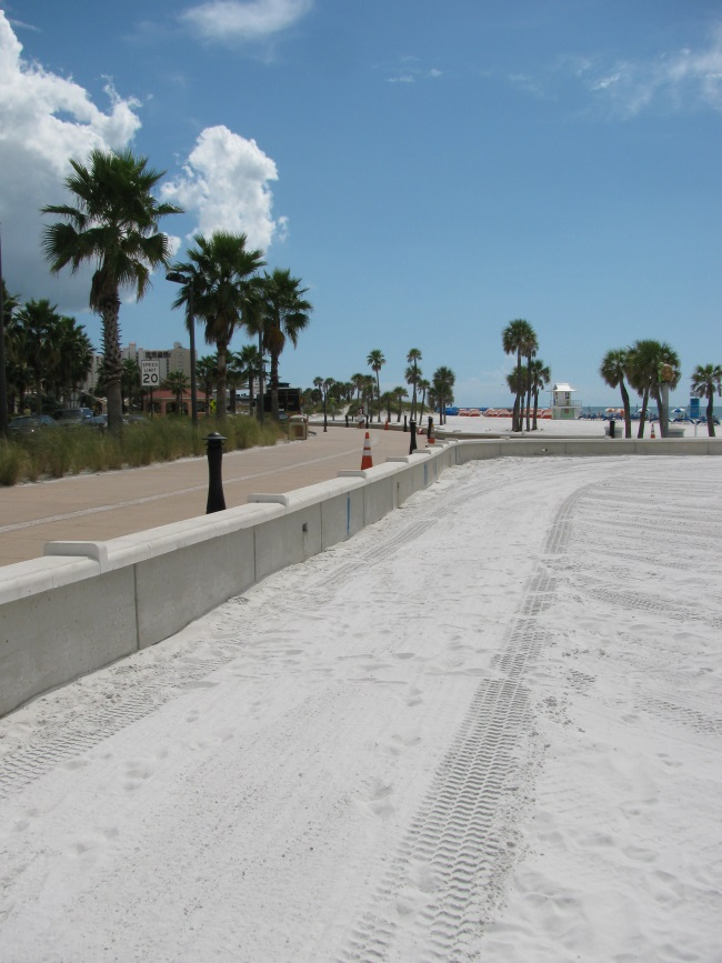 Top 7 Walks at Clearwater Beach