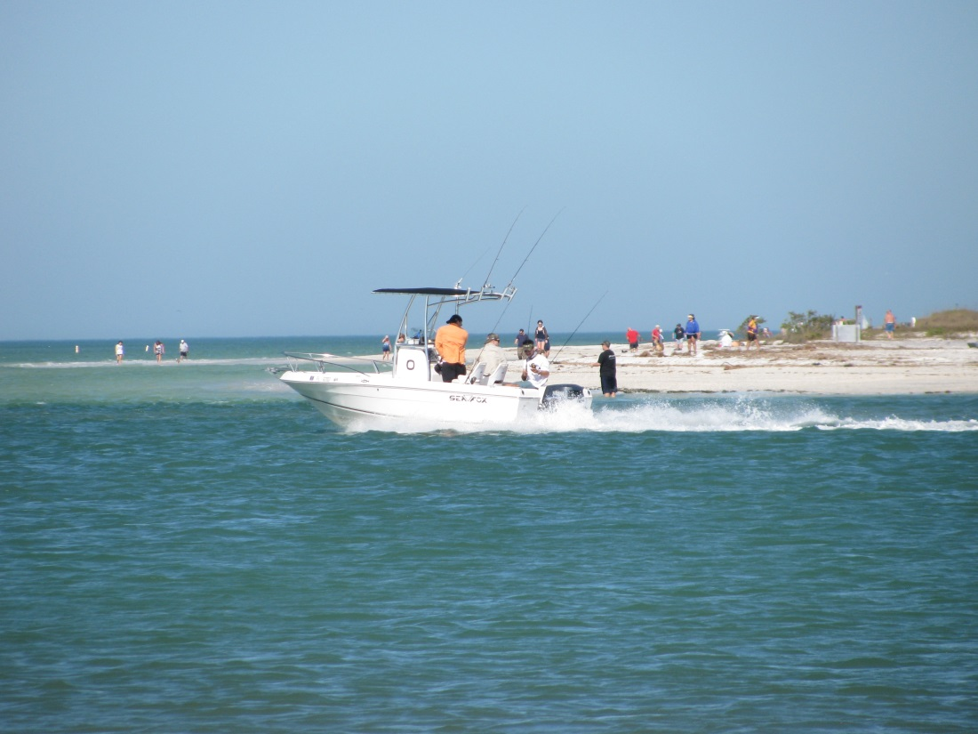 Fishing charter hotspots on the florida gulf coast for Fishing charters mexico beach fl