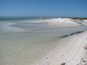 Low tide at Honeymoon Island Florida