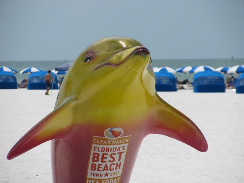 Explore the Gulf Coast Dolphin Trail