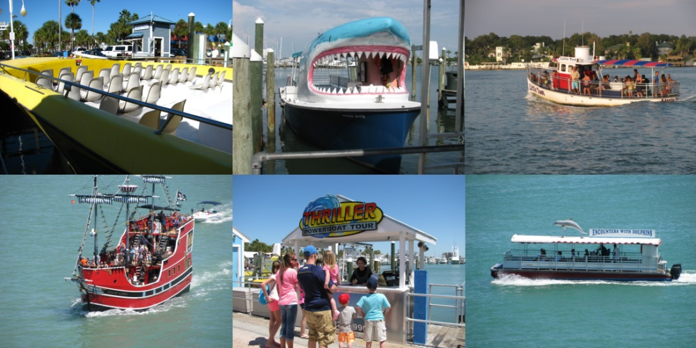 dolphin sighting tours