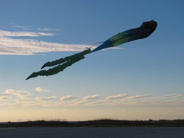 Kite festival Treasure Island Florida