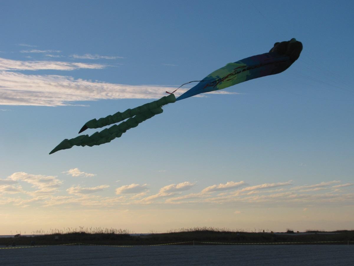 Veterans Day Fall Kite Festival at Treasure Island