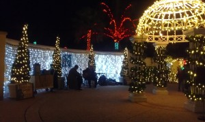 Live music at Holiday Lights in the Gardens