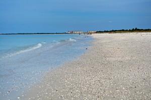 Caladesi Island beach