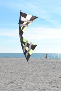 kite at Treasure Island Beach
