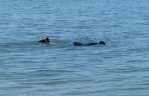 Snorkel for geocache