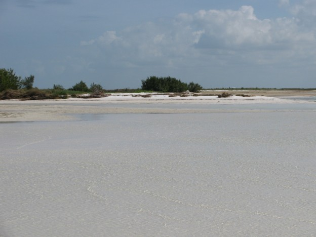 North Sandbar Anclote Key