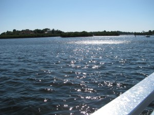 Anclote River Tour