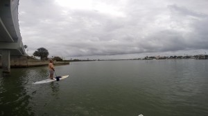 Paddleboard Clearwater Harbor