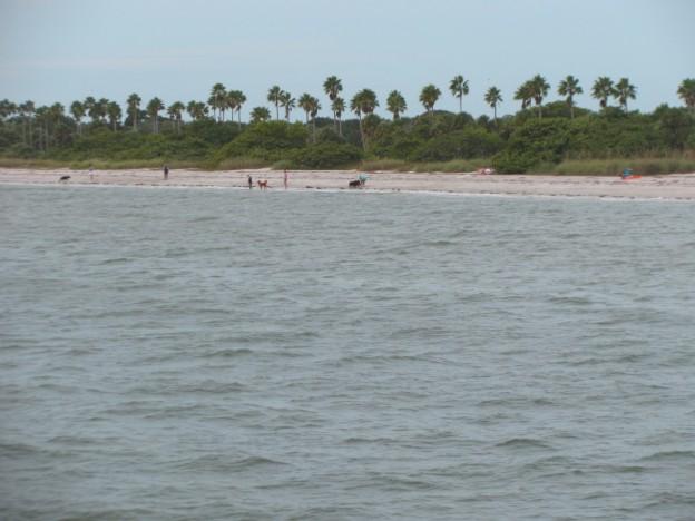Egmont Key Florida