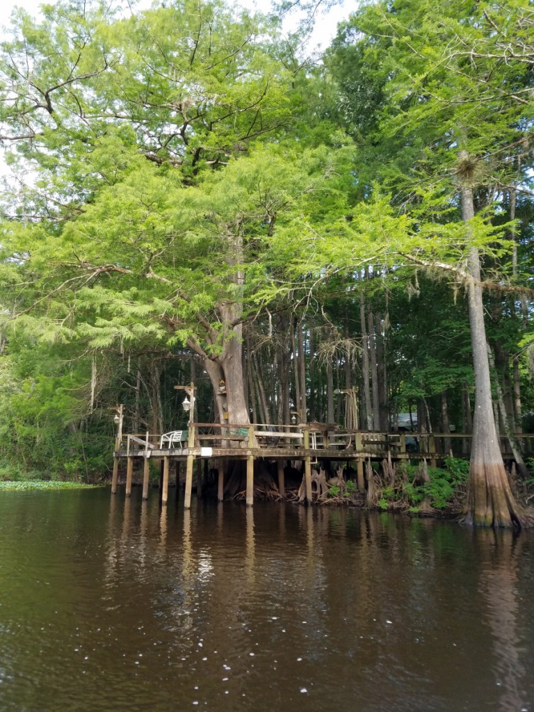 Deck on the Withlacoochee