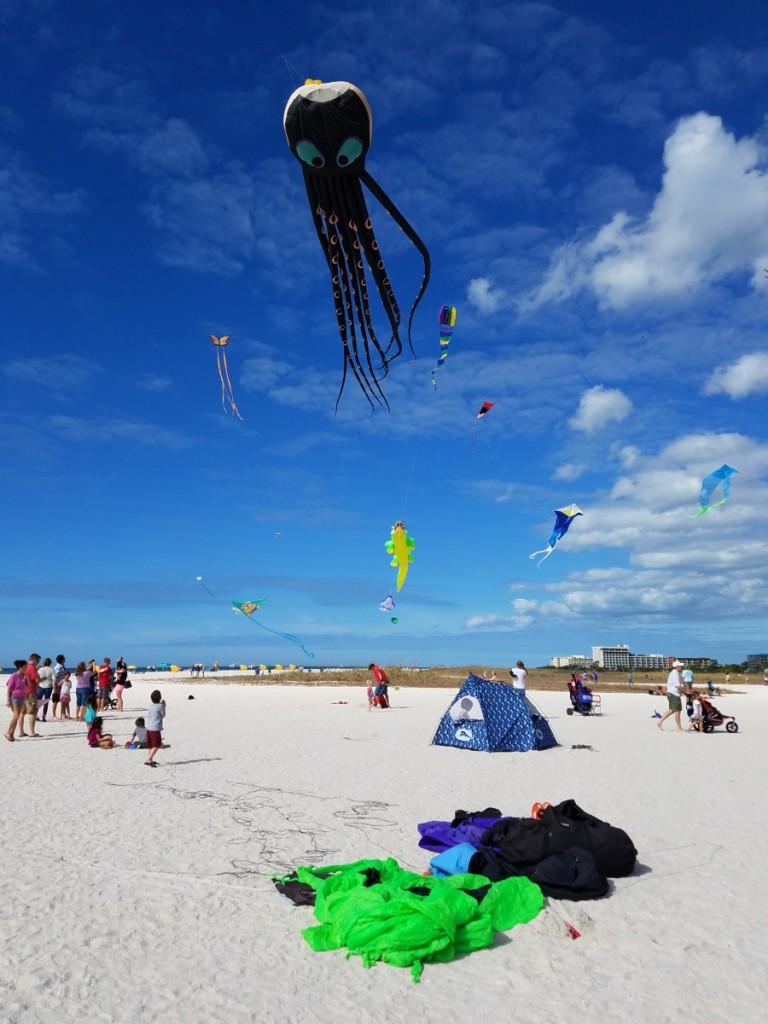Giant octopus kite